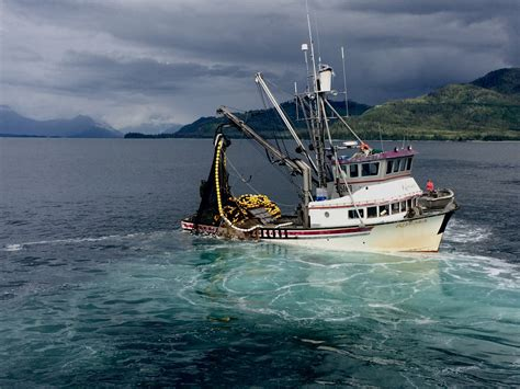 commercial fishing boat jobs uk 7 of the most dangerous jobs in the world career advice