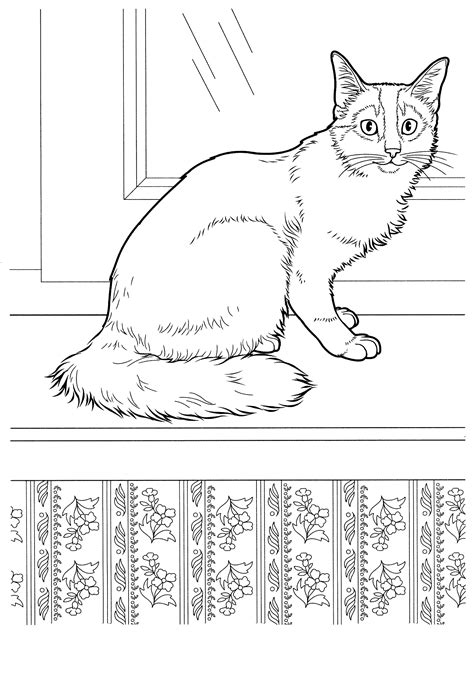 coloring page somali cat