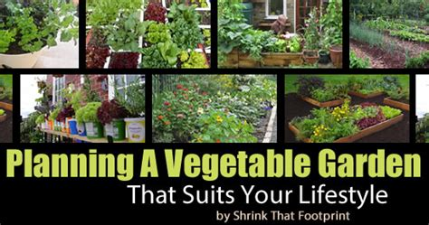 How To Start A Vegetable Garden That Suits Your Lifestyle How To Start A Vegetable Garden In Your Backyard