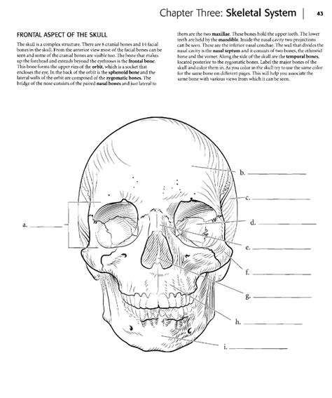 92 Coloring Book Of Anatomy Marieb Anatomy Physiol Anatomy Coloring Book