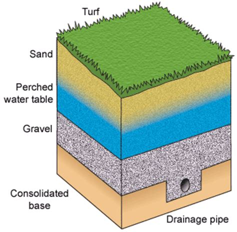 what is a water table perched water table