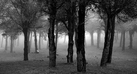 pasar imagen blanco y negro online pasar a blanco y negro i fotograffacil