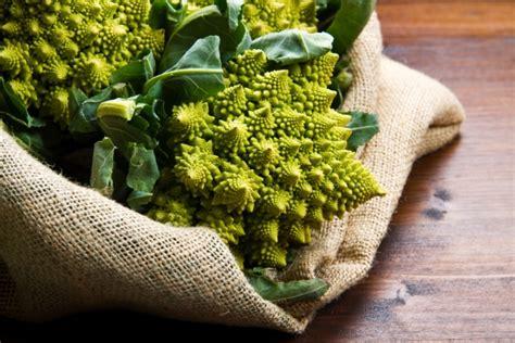 cucinare i broccoli verdi come cucinare i broccoli 3 ricette tutte verdi