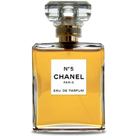 Parfum Chanel No 5 Dari Channel smell like a 8 signature perfumes every must own popxo