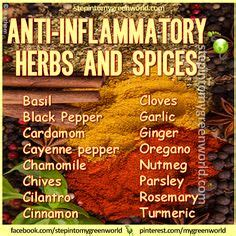 the spice diet use powerhouse flavor to fight cravings and win the weight loss battle books anti inflammatory foods on turmeric anti