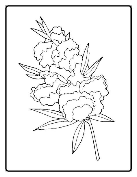 florals a coloring book for adults coloring collection books flower coloring pages for adults az coloring pages