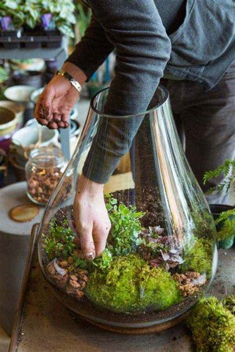 25 maneiras inteligentes de ter seu pr 243 prio jardim dentro