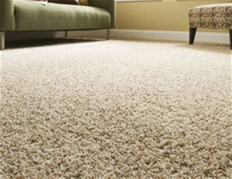 cutting a rug meaning cleaning carpet buying guide americlean inc