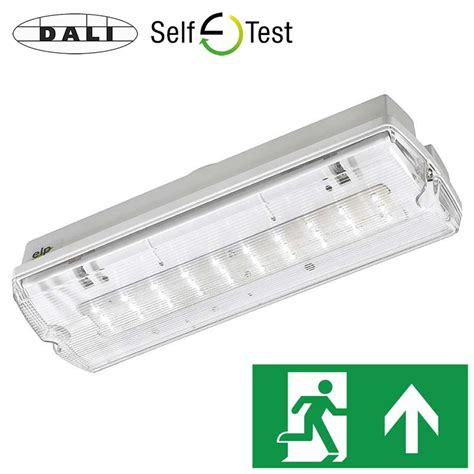 self testo bulkheads emergency lighting products ltd