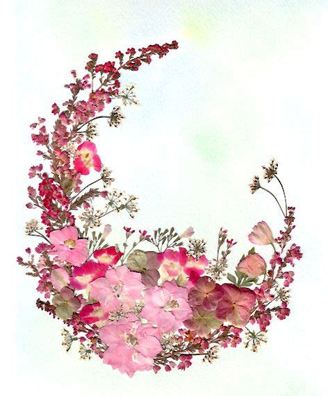 the flowers art and best 25 pressed flower art ideas on pressed flowers frame pressing flowers and