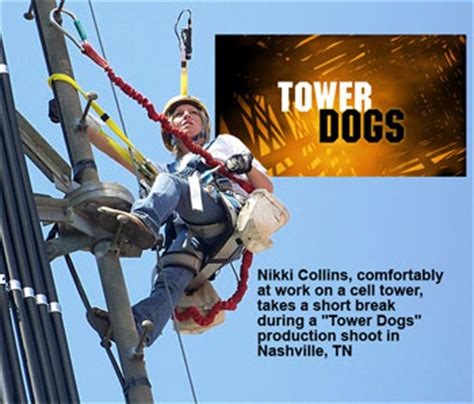 tower dogs tower dogs