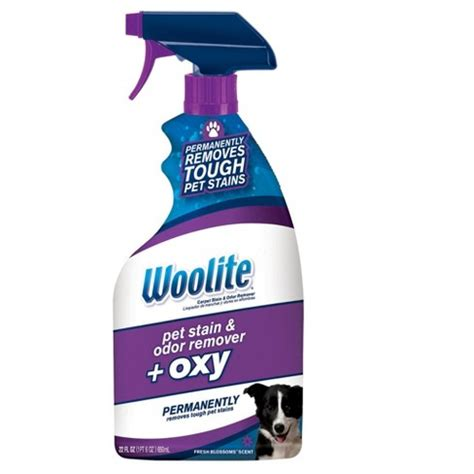 woolite carpet pet stain odor oxy target