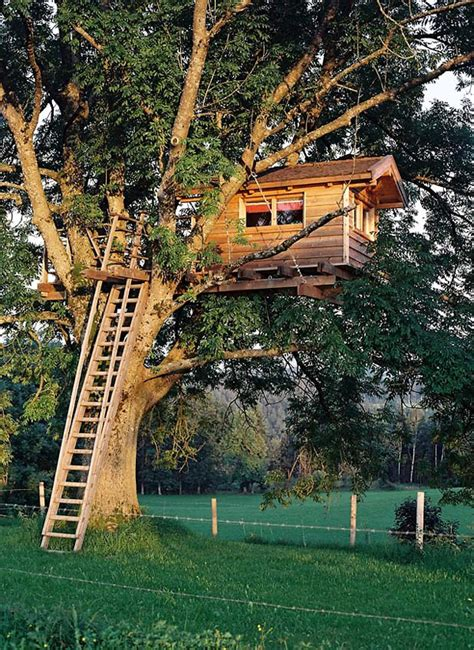 Backyard Treehouse For by 20 Modern Tree Houses By Baumraum Home Design And Interior