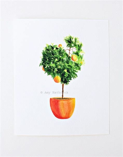 Painting For Kitchen by Orange Tree Watercolor Print Nursery Office Kitchen