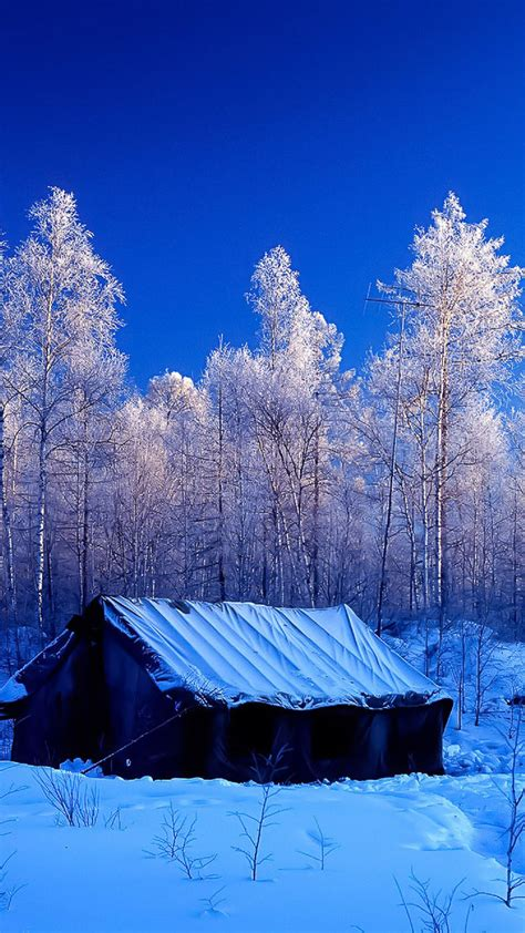 Snow Forest Tent Winter Nature Android Wallpaper free download