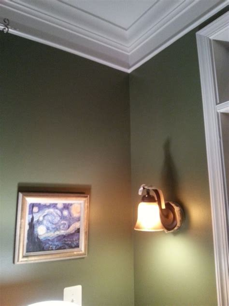 sw7734 olive gove by sherwin williams interiors