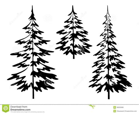 simple pine tree drawing black and white pine tree outline
