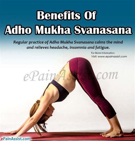 downward benefits benefits of adho mukha svanasana or downward facing pose steps to do it