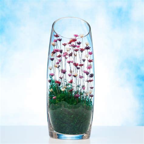 Vase Terrarium by Glass Vase Terrarium