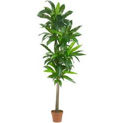 potted plants 6 foot artificial dracaena plant potted 6596