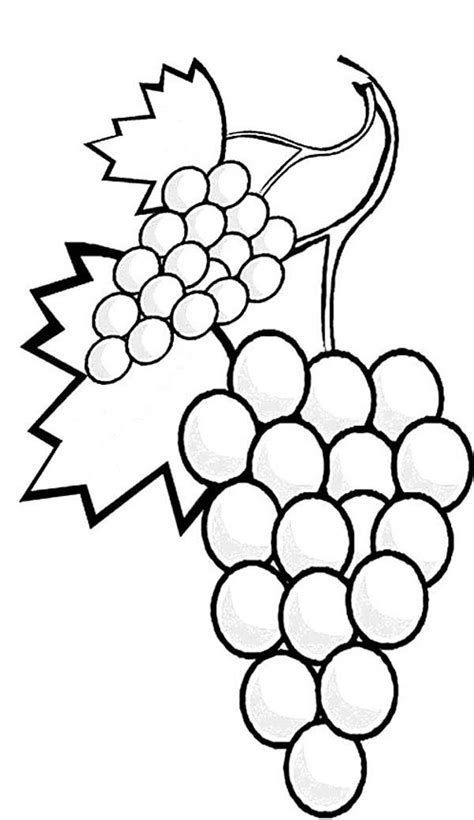 free printable coloring pages grapes colouring page for grapes stalk of grapes coloring page a