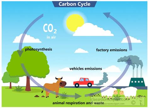 Carbon Cycle Clip science clipart carbon cycle clipart classroom clipart