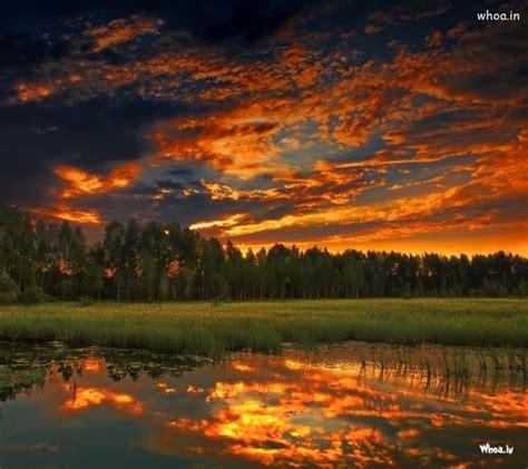 natural view  sunset hd wallpaper