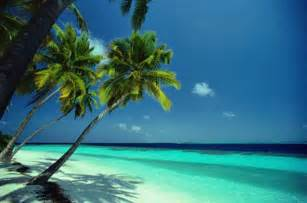 tropical beach wall mural photographic wallpaper murals tropical beach just for sharing