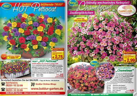 Garten Pflanzen Katalog by Baldur Garten Katalog Terrassen Und Balkonbepflanzung