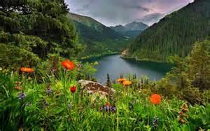 le natur fond ecran gratuit ciel bleu et nature fonds ecran