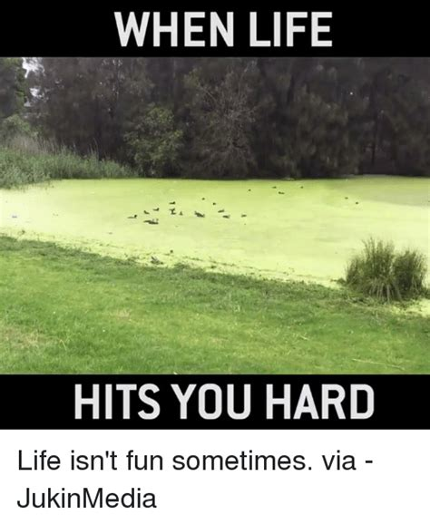 memes  hard life hard life memes