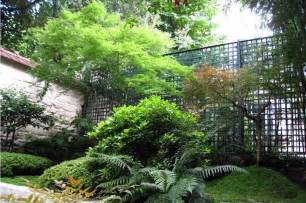 jardin japonais sur terrasse dootdadoo id 233 es de