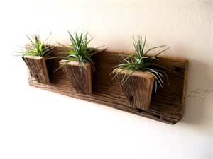 air plant holder planters tillandsia air plants by