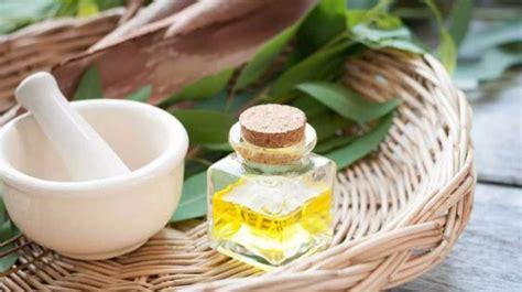 manfaat minyak kayu putih  wajah lebih sehat