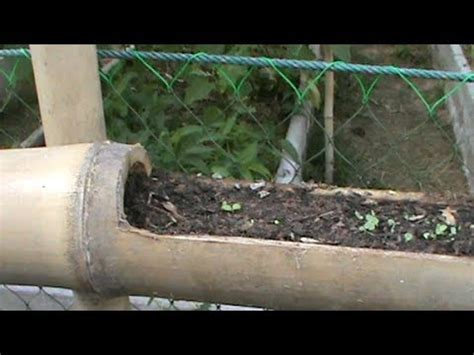 home  bamboo planter vertical gardening youtube