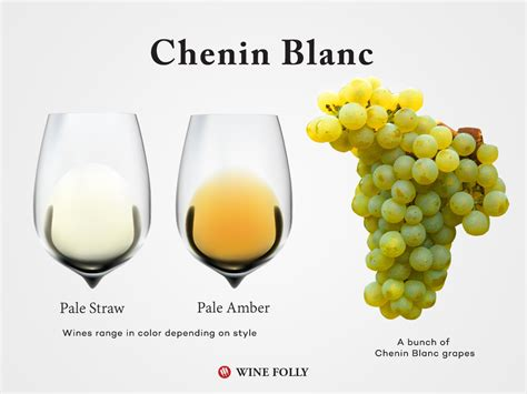 chardonnay color the chenin blanc wine guide wine folly
