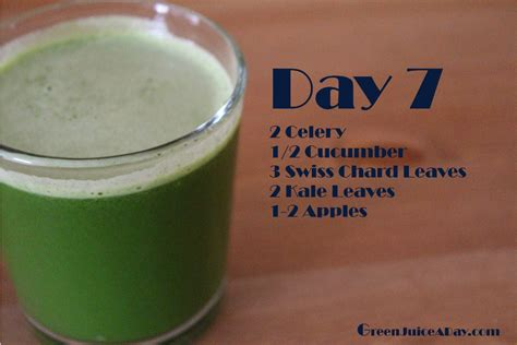 Green Apple Detox Juice Recipe by 30 Green Juice Recipes Green Juice A Day Green Juice A Day