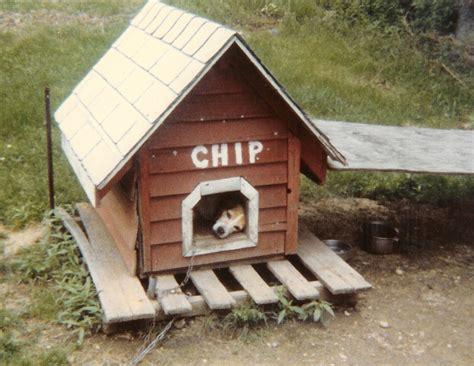 beagle dog house chip s dog house woodbin