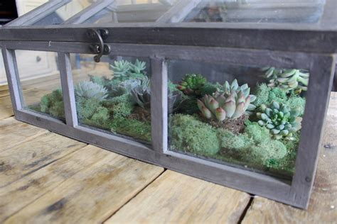 Living Room Terrarium Coffee Table With Traditional Legs Coffee Table Terrarium