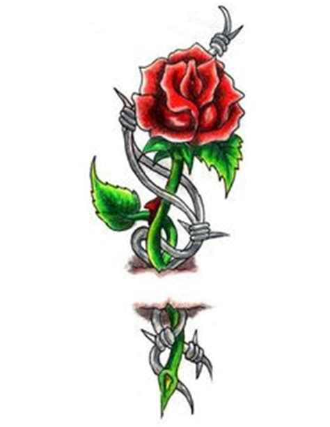 roses designs classic and barbed wire