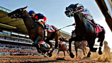 best betting strategy best betting strategy racing