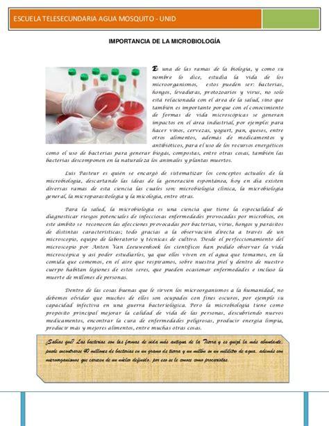 biography nghia là gì importancia de la microbiolog 237 a