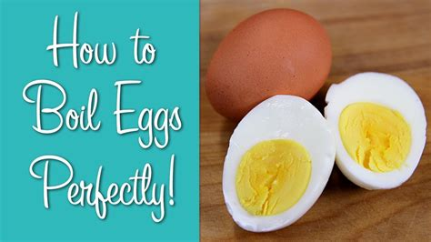 how should i boil a how should i cook eggs for boiled howsto co