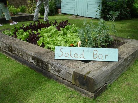 Raised Beds With Sleepers by Open Garden Raised Beds With Railway Sleepers