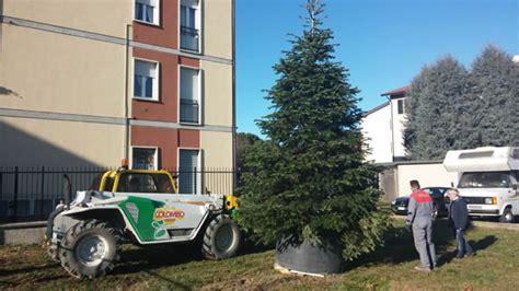 colombo giardini merate natale in viale verdi 232 pronto albero gi 224