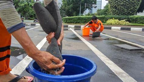 Plastik Untuk Pengecoran Jalan djarot dukung uji coba aspal plastik untuk jalan di jakarta metro tempo co
