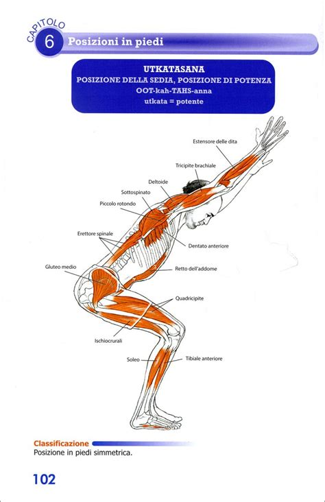 libro functional anatomy of yoga yoga anatomy libro di leslie kaminoff