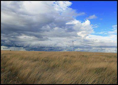 el viento por la advertencia por vientos fuertes florida24