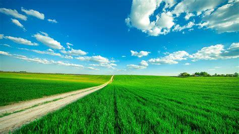 wallpaper landscape clouds clear sky paddy field
