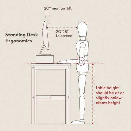 correct height for standing desk posture proper ergonomics for a standing desk